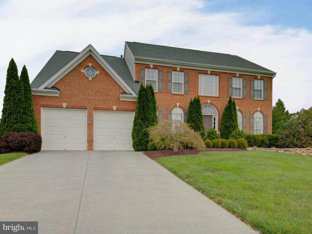 906 Armistead Street, WINCHESTER, VA 22601 (#1000396720) :: Colgan Real Estate