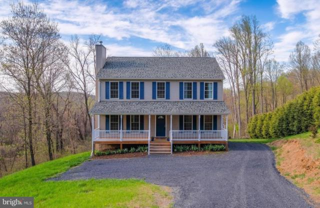 321 Northern Spy Drive, LINDEN, VA 22642 (#1000399704) :: Remax Preferred | Scott Kompa Group