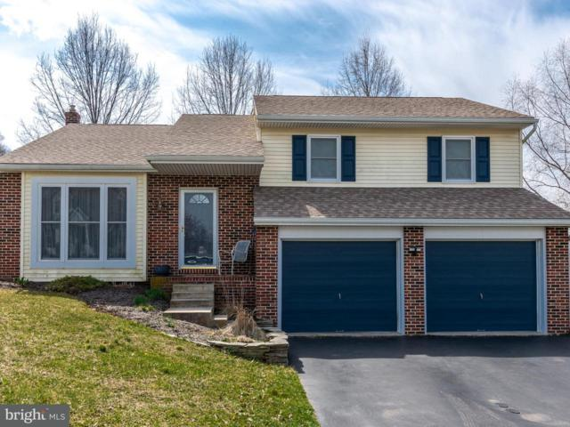 125 Chapel View Drive, REINHOLDS, PA 17569 (#1000403066) :: The Craig Hartranft Team, Berkshire Hathaway Homesale Realty
