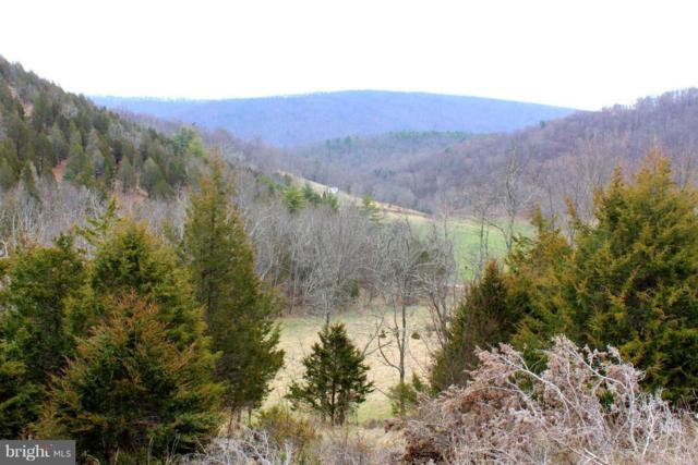 15 acs-15 ACS Mauzy Gap, FRANKLIN, WV 26807 (#1000406106) :: The Sky Group