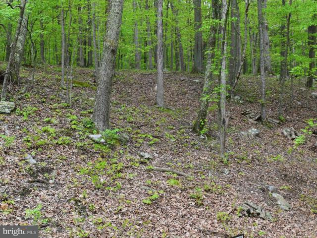 Fern Valley Road, GREAT CACAPON, WV 25422 (#1000408046) :: ExecuHome Realty