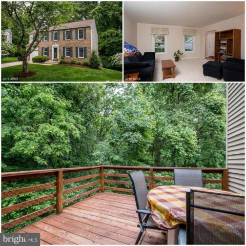 6119 Minute Hand Court, COLUMBIA, MD 21044 (#1000409380) :: Colgan Real Estate