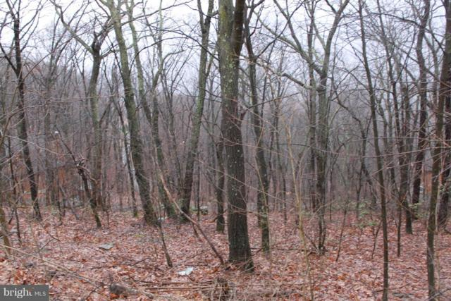 114-LOT Timberlake Drive, JAMES CREEK, PA 16657 (#1000413370) :: The Joy Daniels Real Estate Group
