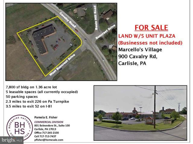 900 Cavalry Road, CARLISLE, PA 17013 (#1000414692) :: The Joy Daniels Real Estate Group