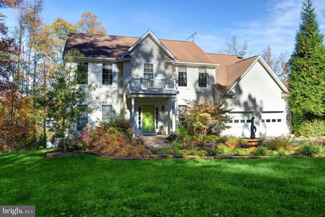 81 Newton M Johnson Drive, BUMPASS, VA 23024 (#1000417790) :: Colgan Real Estate