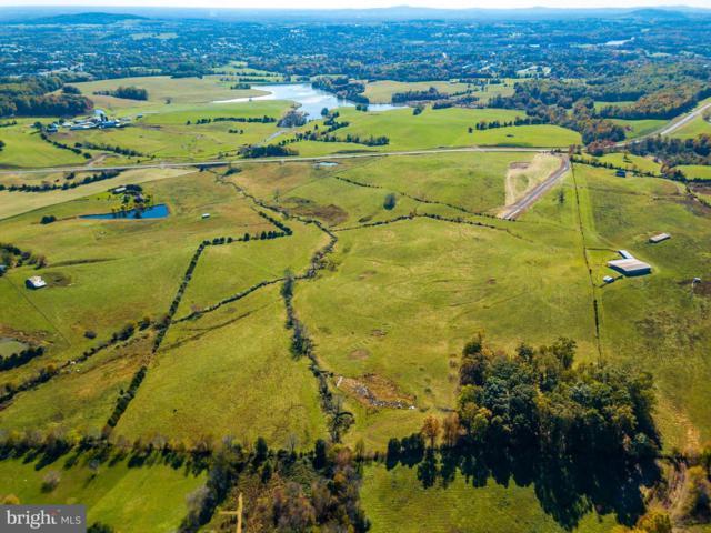 Clark Meadow Lane, CULPEPER, VA 22701 (#1000419110) :: Eng Garcia Grant & Co.