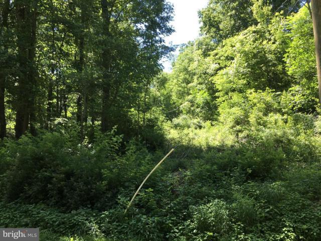 13924 Stottlemyer Road, MYERSVILLE, MD 21773 (#1000421698) :: Remax Preferred | Scott Kompa Group