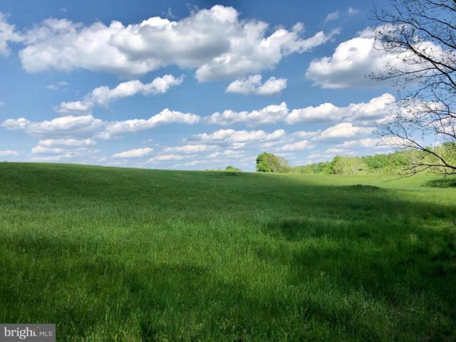 LOT  38B - Sally Mil Sally Mill, MIDDLEBURG, VA 20117 (#1000427716) :: ExecuHome Realty