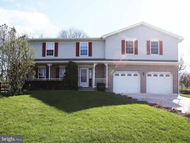 54 Frock Drive, HANOVER, PA 17331 (#1000429472) :: The Joy Daniels Real Estate Group