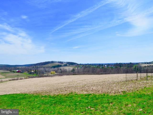 360 Mount Tabor Road, GARDNERS, PA 17324 (#1000429802) :: The Heather Neidlinger Team With Berkshire Hathaway HomeServices Homesale Realty