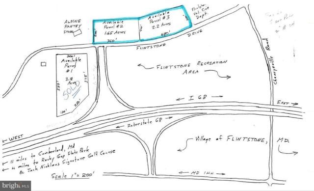 Flintstone Drive, FLINTSTONE, MD 21530 (#1000432348) :: ExecuHome Realty