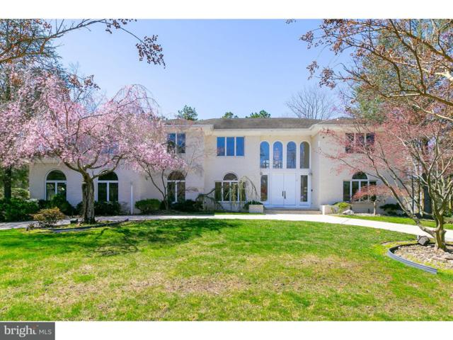 3 Shingle Oak Court, VOORHEES, NJ 08043 (MLS #1000432422) :: The Dekanski Home Selling Team