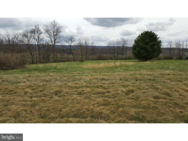 Lot 11 Ricks Road, NEW RINGGOLD, PA 17960 (#1000437120) :: The Heather Neidlinger Team With Berkshire Hathaway HomeServices Homesale Realty