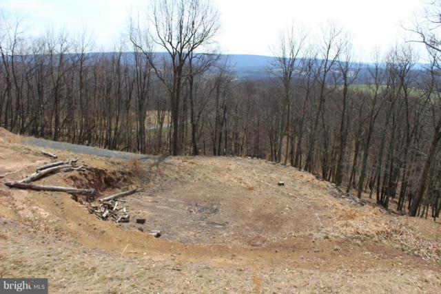 1085 Top Of The Mountain Road, MOOREFIELD, WV 26836 (#1000442650) :: Eng Garcia Grant & Co.