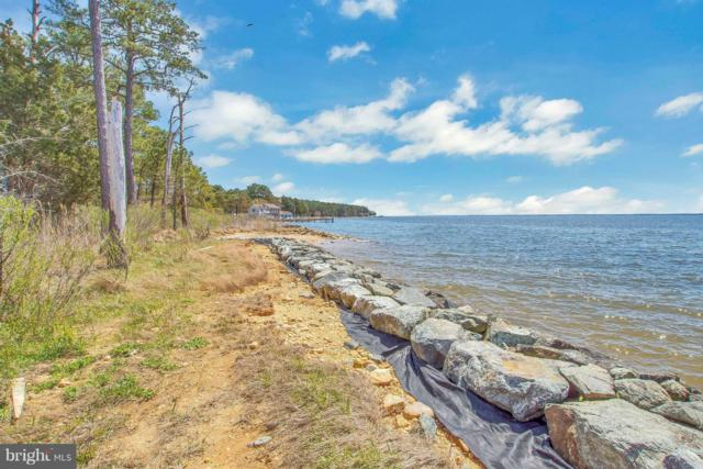 16441 Harms Way, PINEY POINT, MD 20674 (#1000450730) :: ExecuHome Realty