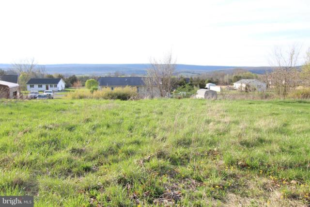 North Mountain Road, WARDENSVILLE, WV 26851 (#1000454878) :: The Gus Anthony Team