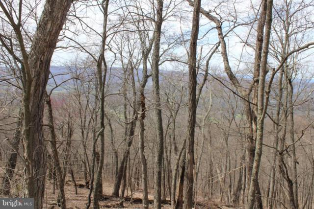 Lot 1 Sec 2 High Knob Road, OLD FIELDS, WV 26845 (#1000462358) :: ExecuHome Realty