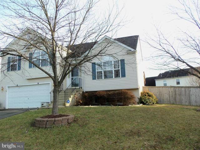 3 Little Field Drive, FREDERICKSBURG, VA 22405 (#1000465728) :: Colgan Real Estate