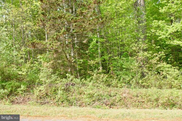 Crestview Drive, STAFFORD, VA 22556 (#1000487268) :: Bob Lucido Team of Keller Williams Integrity