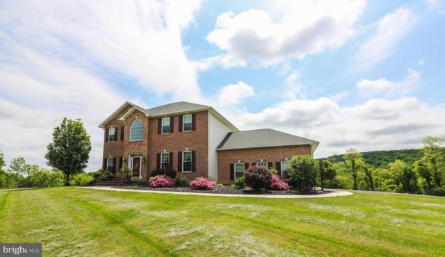374 Farm View Lane, ROMNEY, WV 26757 (#1000492500) :: ExecuHome Realty