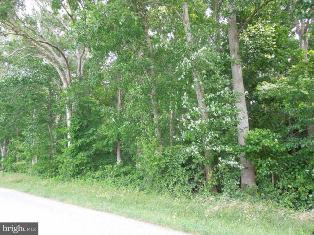 St Martins Neck Road, BISHOPVILLE, MD 21813 (#1000805290) :: RE/MAX Coast and Country