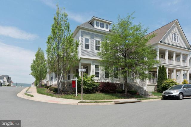 36070 Welland Drive, ROUND HILL, VA 20141 (#1000866326) :: Colgan Real Estate