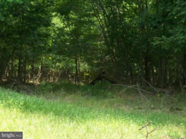 Posey Hollow Road, BERKELEY SPRINGS, WV 25411 (#1000866892) :: Eng Garcia Grant & Co.