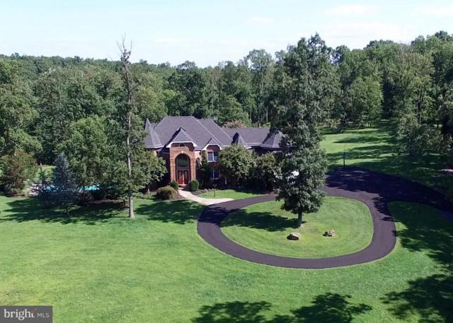 41155 Trotter Lane, PAEONIAN SPRINGS, VA 20129 (#1000868298) :: The Gus Anthony Team