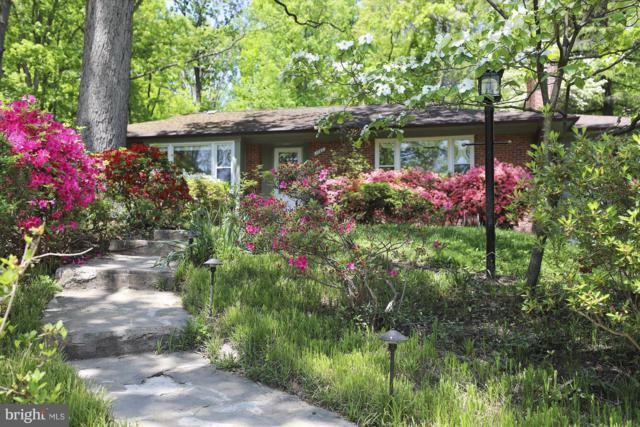 10779 Kinloch Road, SILVER SPRING, MD 20903 (#1001176224) :: Great Falls Great Homes