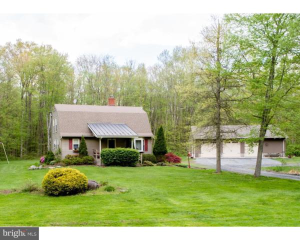 527 Thousand Acre Road, SELLERSVILLE, PA 18960 (#1001183914) :: John Smith Real Estate Group