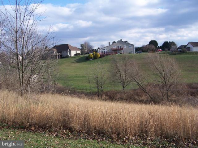 0 Schwartz Valley Road, SCHUYLKILL HAVEN, PA 17972 (#1001249774) :: Erik Hoferer & Associates