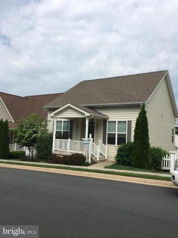 17442 Lethridge Circle, ROUND HILL, VA 20141 (#1001337476) :: Colgan Real Estate