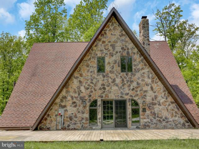 696 Huckleberry Road, NEW BLOOMFIELD, PA 17068 (#1001486802) :: The Joy Daniels Real Estate Group