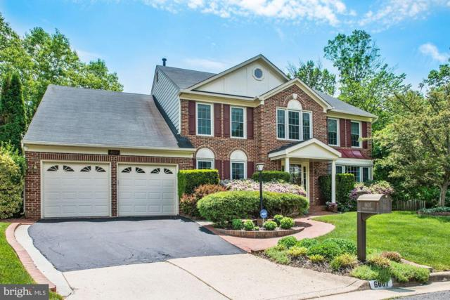 6607 English Saddle Court, CENTREVILLE, VA 20121 (#1001529042) :: The Gold Standard Group