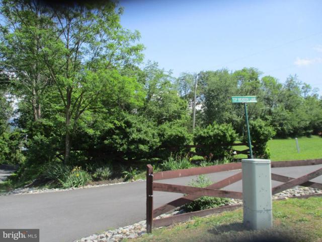 Top Meadow, BERKELEY SPRINGS, WV 25411 (#1001534332) :: Great Falls Great Homes