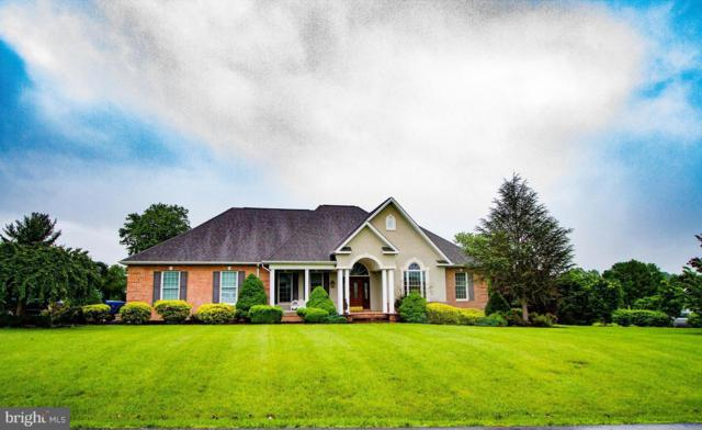 400 Beall Avenue, LURAY, VA 22835 (#1001536116) :: Bic DeCaro & Associates