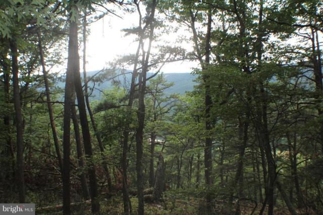 88.25 ACS Wilderness Way, PETERSBURG, WV 26847 (#1001536990) :: Eng Garcia Grant & Co.