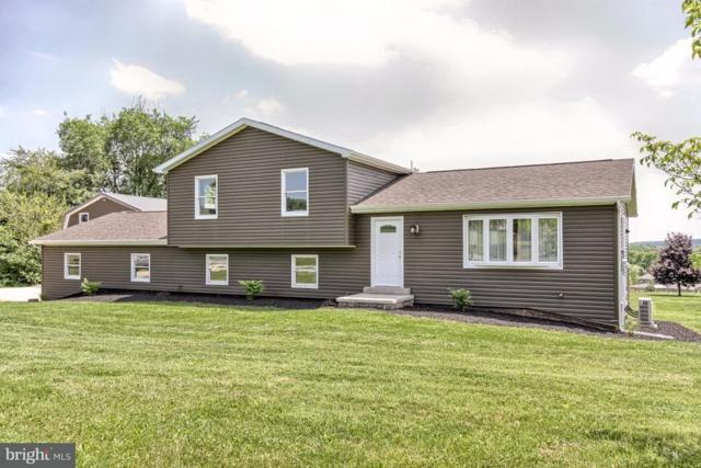 40 Acomo Drive, DILLSBURG, PA 17019 (#1001539370) :: The Joy Daniels Real Estate Group