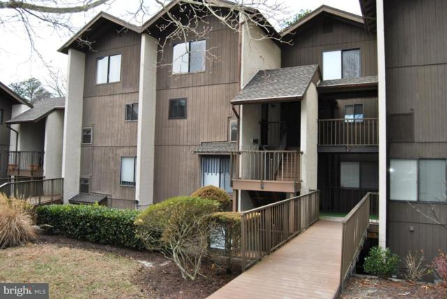 228 Canal Park Drive G215, SALISBURY, MD 21804 (#1001560868) :: RE/MAX Coast and Country