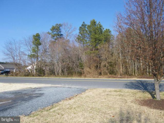Winterplace Parkway, SALISBURY, MD 21804 (#1001561236) :: ExecuHome Realty
