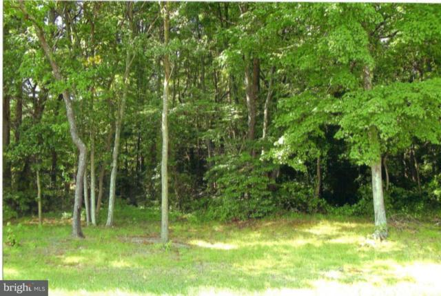 Lot 2 Eden Allen Road, EDEN, MD 21822 (#1001561538) :: RE/MAX Coast and Country