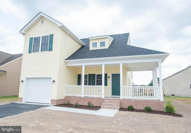 313 Cottonwood Drive, FRUITLAND, MD 21826 (#1001562360) :: Atlantic Shores Realty