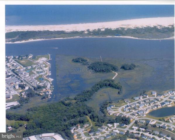2004 Pony Island Lane, BERLIN, MD 21811 (#1001562438) :: Atlantic Shores Realty