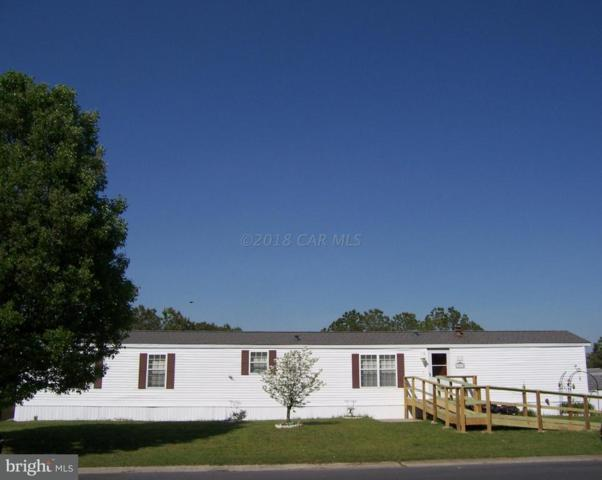 26674 Osprey Circle, HEBRON, MD 21830 (#1001563028) :: The Windrow Group