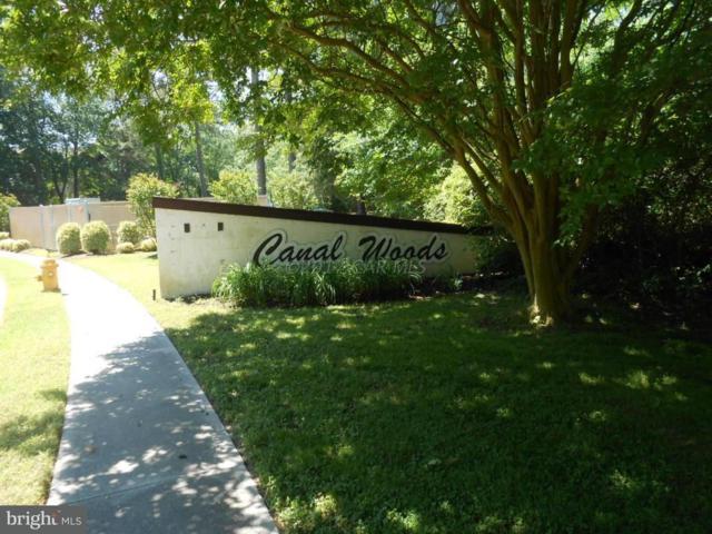 228 Canal Park Drive G2, SALISBURY, MD 21804 (#1001564310) :: Barrows and Associates