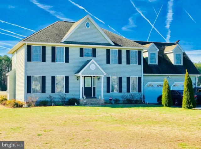 1618 Crawford Drive, SALISBURY, MD 21804 (#1001564668) :: The Windrow Group