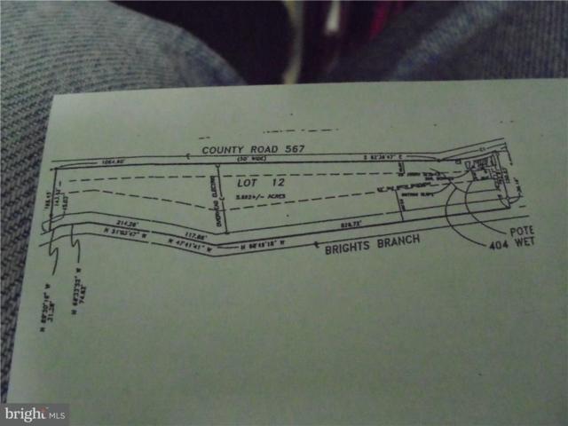 Mcdowell Road, BRIDGEVILLE, DE 19933 (#1001565346) :: Colgan Real Estate