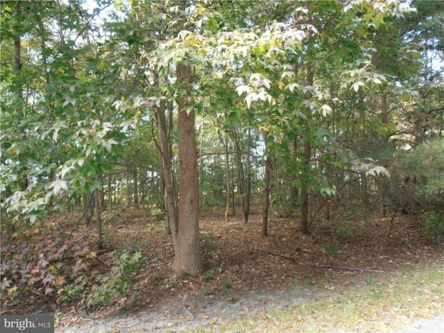 Lot 40 Block A Avalon Drive #40, GEORGETOWN, DE 19947 (#1001565746) :: The Windrow Group
