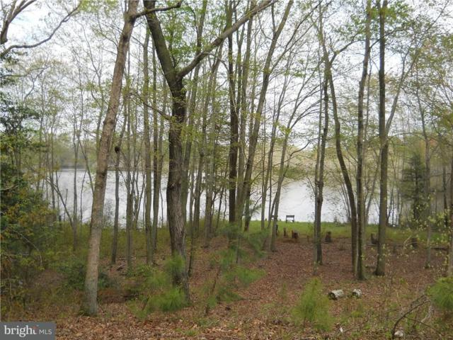 Lot 4 Waterview Drive, SEAFORD, DE 19973 (#1001565824) :: Barrows and Associates