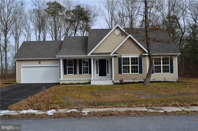 25891 Country Meadows Drive, MILLSBORO, DE 19966 (#1001565998) :: Barrows and Associates